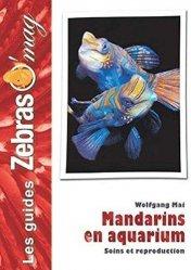Mandarins en aquarium