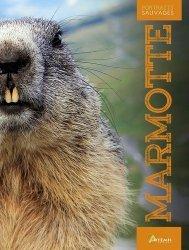 Souvent acheté avec Le Chevreuil, le Marmotte