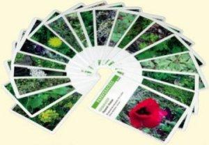 Souvent acheté avec Planti'cartes. Jeux de reconnaissance des plantes exotiques et d'ornement - Avec 62 cartes à jouer, le Malherbo'cartes