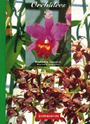 Souvent acheté avec Orchidées, le Orchidées