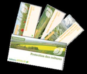 Dernières parutions sur Production végétale, Pack protection des céréales à paille 2018