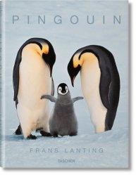 Dernières parutions sur Palmipèdes, Pingouin