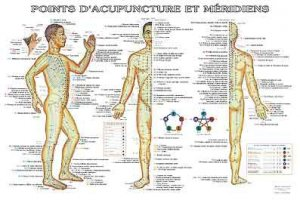 Planche des points d'acupuncture et méridiens avec les indications pathologiques