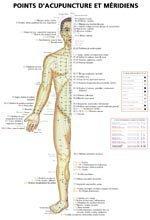 Planches des points d'acupuncture et méridiens
