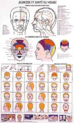 Souvent acheté avec Planche de massage réflexe auriculaire, le Planche Jeunesse et santé du visage
