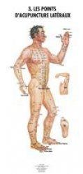 Planches anatomiques des points d'acupuncture des 14 méridiens et des points hors méridiens