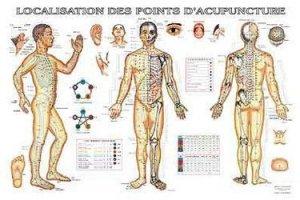 Planche de localisation des points d'acupuncture