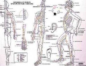 Dernières parutions dans , Planche méridiens et points d'acupuncture chinoise