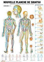 Souvent acheté avec Atlas d'acupuncture pratique et aide-memoire du praticien, le Planche de Shiatsu