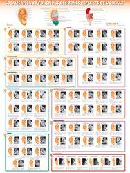 Souvent acheté avec La réflexologie faciale selon la méthode Dien Chan, le Planches des localisation et fonctions des zones réflexes de l'oreille