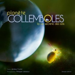 Souvent acheté avec La vie rêvée des morpions, le Planète Collemboles la vie secrète des sols