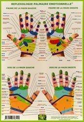 Dernières parutions sur Planches - Posters, Planche de pratique en Réflexologie palmaire émotionnelle avec zones prénatales