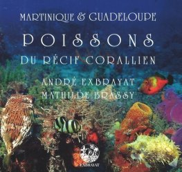 Dernières parutions sur Poissons d'eau de mer, Poissons du récif corallien