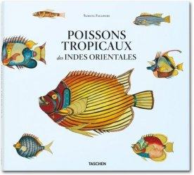 Souvent acheté avec Poissons de mer de l'ouest africain tropical, le Poissons tropicaux des Indes orientales