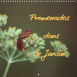 Dernières parutions sur Fleurs et plantes, Promenades dans le jardin. Edition 2021