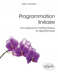 Dernières parutions sur Techniques de programmation, Programmation linéaire