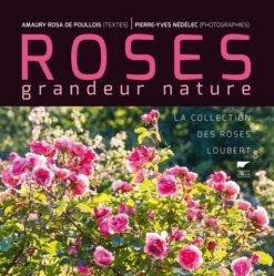 Dernières parutions dans Botanique, Roses grandeur nature