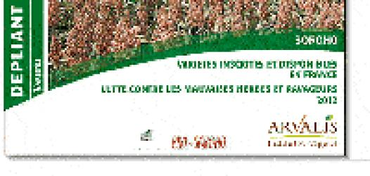Souvent acheté avec Stockage des produits phytosanitaires: comment construire et aménager son local, le Sorgho variétés inscrites et disponibles en France