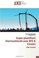Dernières parutions sur Génie civil, Super-plastifiant thermostimulé avec BFS & Ciment