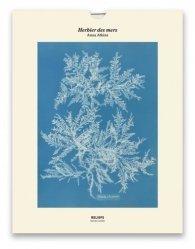 Dernières parutions sur Illustration, Tirage - Herbier des mers