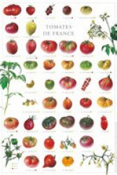 Dernières parutions sur Affiches - Poster, Affiche Tomates de France