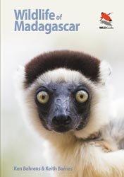 Dernières parutions sur Faune terrestre, Wildlife of Madagascar