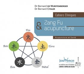 Dernières parutions sur Acupuncture - Médecine chinoise, Zang Fu et acunpuncture
