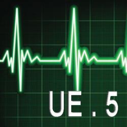 UE 5 : Handicap - Vieillissement - Dépendance - Douleur - Soins palliatifs - Accompagnement