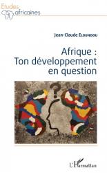 Afrique : ton développement en question