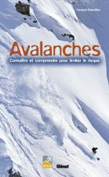 Avalanches