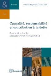Causalité, responsabilité et contribution à la dette