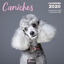 La couverture et les autres extraits de Berger australien : calendrier 2019 : de septembre 2018 à décembre 2019