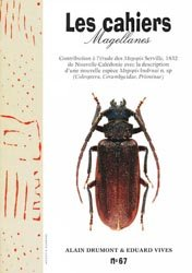 Contribution à l'Etude des Megopis de Nouvelle Caledonie avec la description d'une nouvelle espece Megopis kudrnai n. sp.