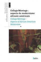 Collage/Montage : aspects du modernisme africain-américain