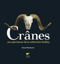 Crânes : 300 spécimens de la collection Dudley