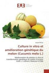 Culture in vitro et amélioration génétique du melon (Cucumis melo L.)