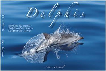 Delphis, dauphins des açores