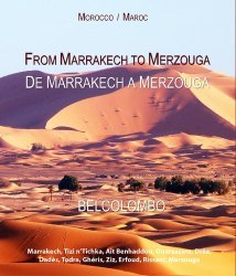 La couverture et les autres extraits de L'ornement dans les arts d'Islam