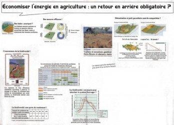 Economiser l'énergie en agriculture : un retour en arrière obligatoire