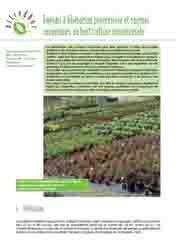 Engrais à libération progressive et engrais organiques en horticulture ornementale