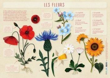 La couverture et les autres extraits de Petit Futé Alsace