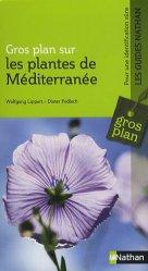 Gros plan sur les plantes de Méditerranée