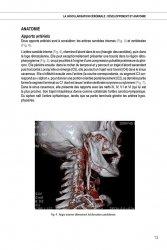 Imagerie des vaisseaux et des pathologies vasculaires