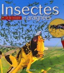 Insectes et araignées à la loupe