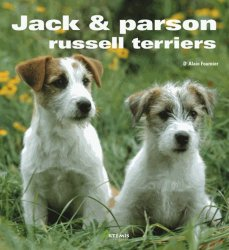 Jack et parson russell terriers