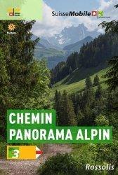La suisse a pied chemin panorama alpin