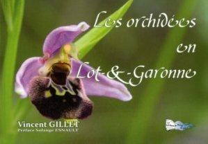 Les orchidées en Lot et Garonne