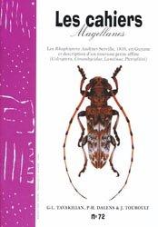 Les Rhaphiptera Audinet-Servill, 1835, en Guyane et description d'un nouveau genre affine