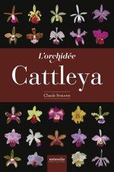 L'orchidée Cattleya
