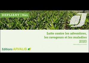 Maïs : lutte contre les adventices, les ravageurs et les maladies - 2020 (dépliant)